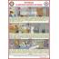 Самоспасатель УФМС «ШАНС» -Е с полумаской (базовая модель)