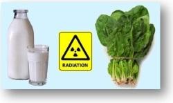 опасность потребления радиоактивных продуктов